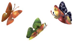 Sommerfuglebilleder_3